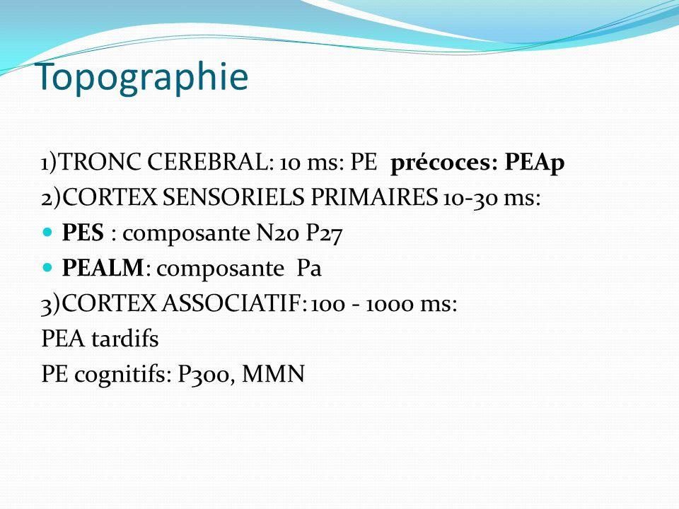 Topographie 1)TRONC CEREBRAL: 10 ms: PE précoces: PEAp 2)CORTEX SENSORIELS PRIMAIRES 10-30 ms: PES : composante N20 P27 PEALM: composante Pa 3)CORTEX