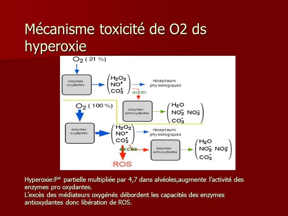 Mécanisme toxicité de O2 ds hyperoxie Hyperoxie:P° partielle multipliée par 4,7 dans alvéoles,augmente lactivité des enzymes pro oxydantes. Lexcès des