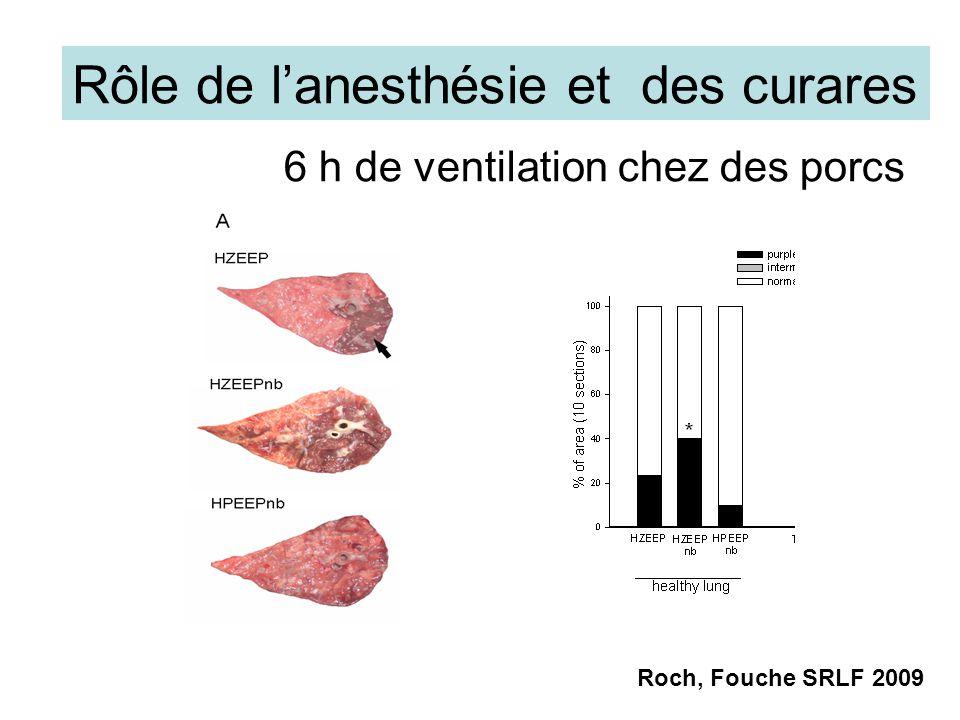 Rôle de lanesthésie et des curares 6 h de ventilation chez des porcs Roch, Fouche SRLF 2009
