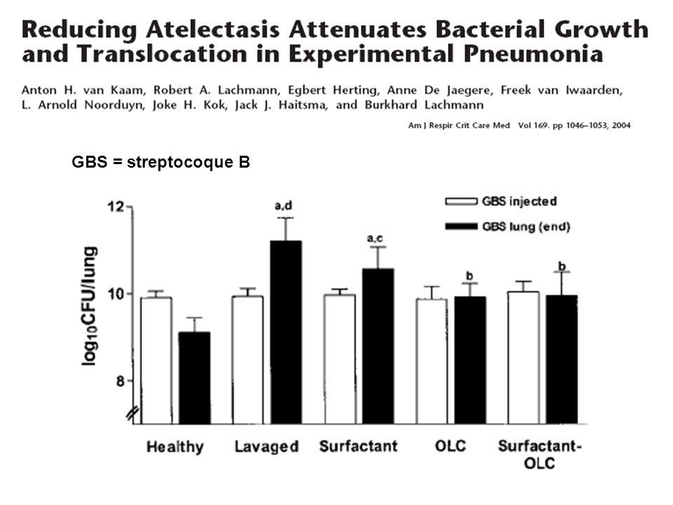 GBS = streptocoque B