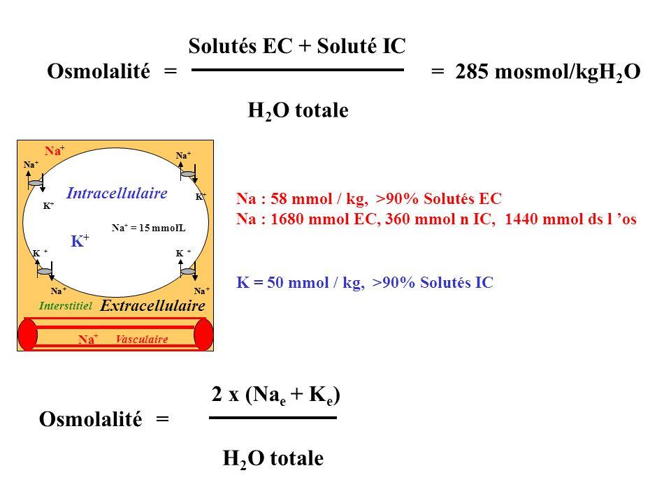 Osmolalité 2 x (Na e + K e ) = H 2 O totale Osmolalité Solutés EC + Soluté IC = H 2 O totale = 285 mosmol/kgH 2 O Na : 58 mmol / kg, >90% Solutés EC N