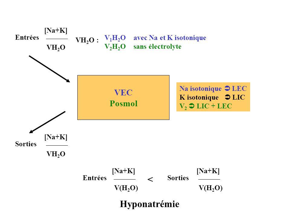 Posmol VEC Posmol V 1 H 2 O avec Na et K isotonique V 2 H 2 O sans électrolyte VH 2 O : Na isotonique LEC K isotonique LIC V 2 LIC + LEC Entrées [Na+K