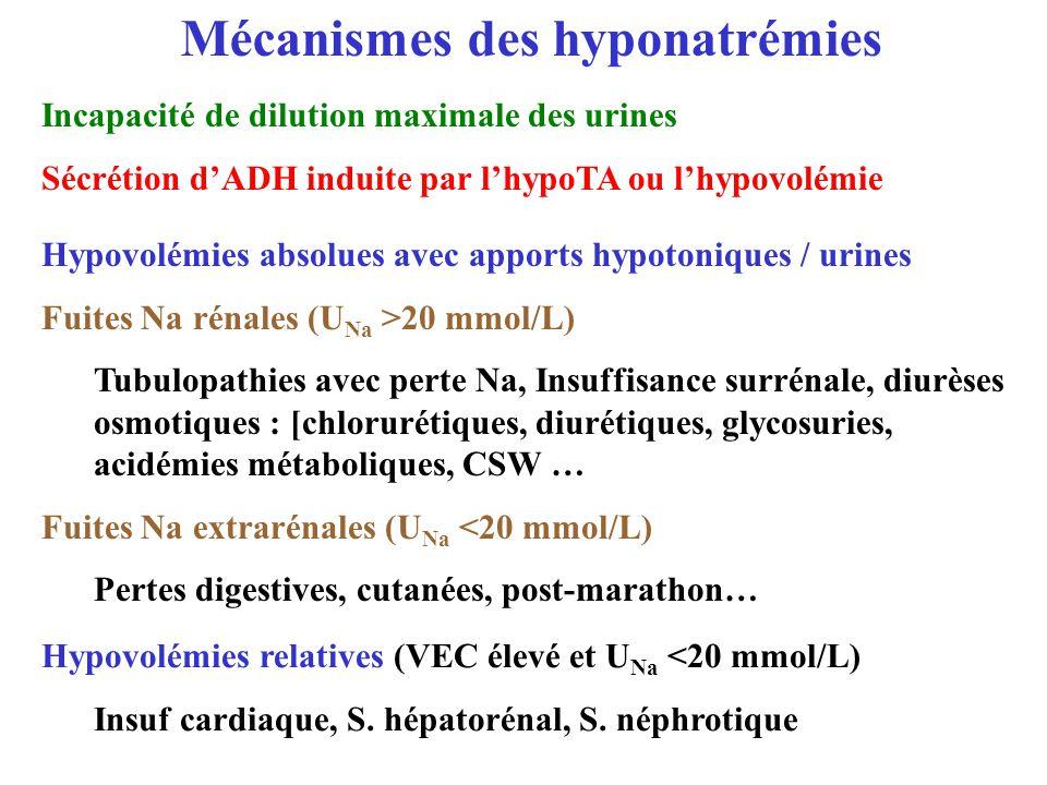 Mécanismes des hyponatrémies Incapacité de dilution maximale des urines Sécrétion dADH induite par lhypoTA ou lhypovolémie Hypovolémies relatives (VEC