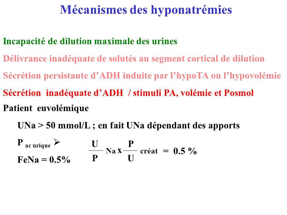 Mécanismes des hyponatrémies Incapacité de dilution maximale des urines Délivrance inadéquate de solutés au segment cortical de dilution Sécrétion per