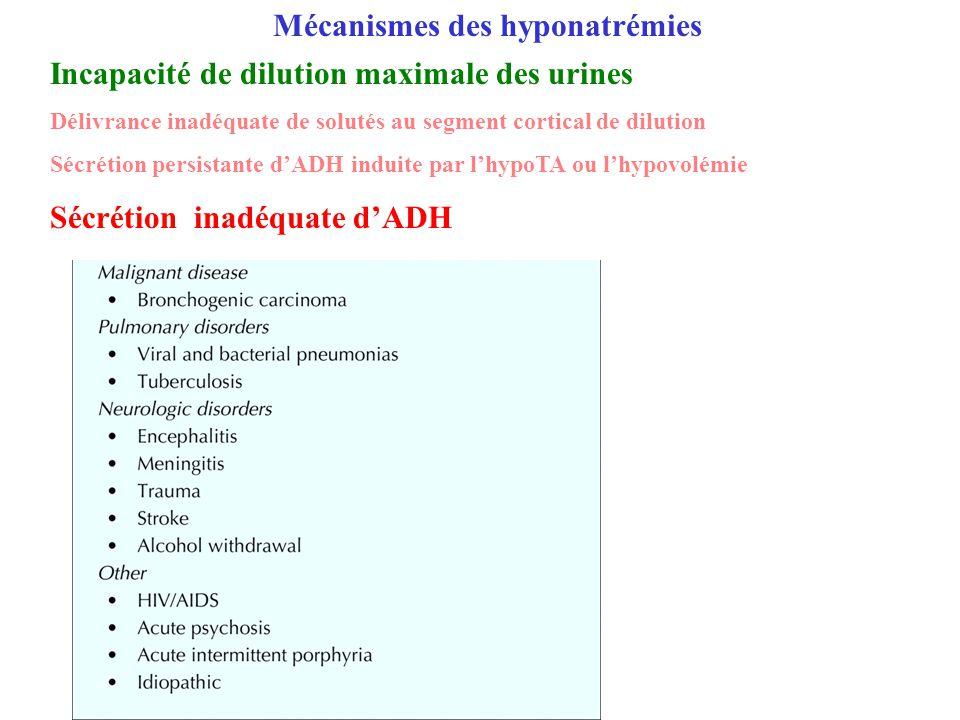 Incapacité de dilution maximale des urines Délivrance inadéquate de solutés au segment cortical de dilution Sécrétion persistante dADH induite par lhy