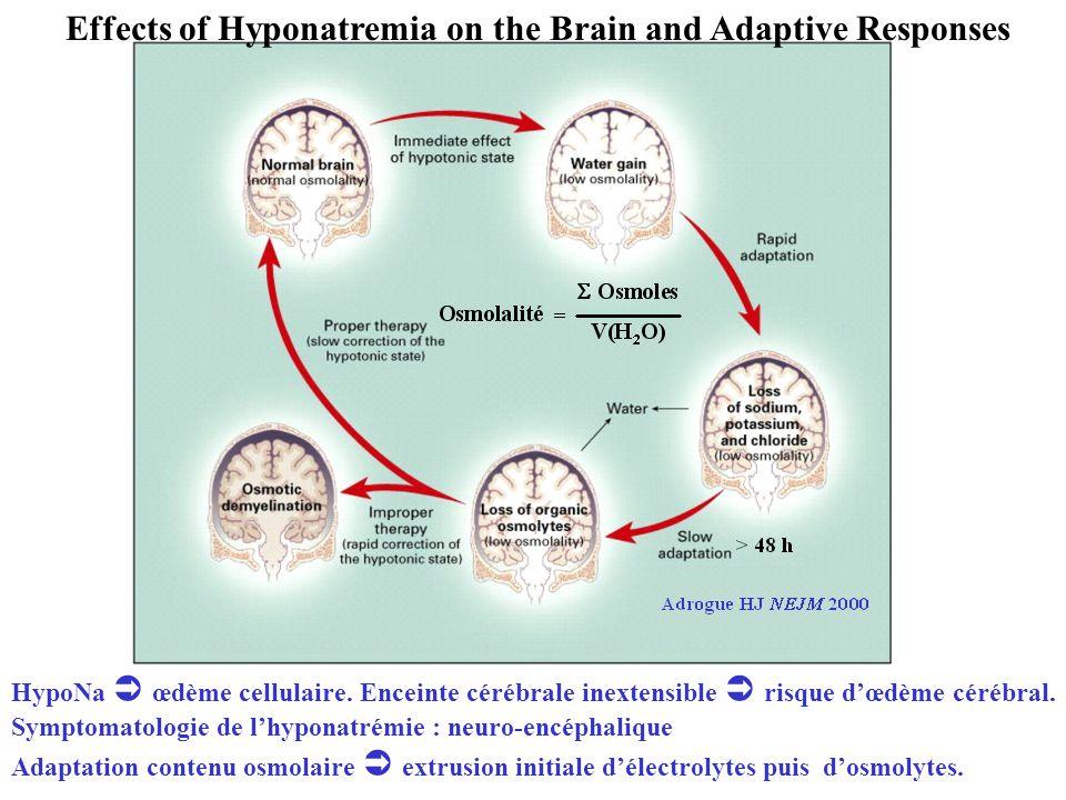 Effects of Hyponatremia on the Brain and Adaptive Responses HypoNa œdème cellulaire. Enceinte cérébrale inextensible risque dœdème cérébral. Symptomat