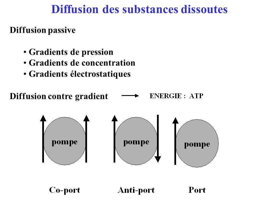 Diffusion des substances dissoutes Diffusion passive Gradients de pression Gradients de concentration Gradients électrostatiques Diffusion contre grad