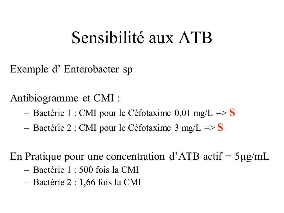 Sensibilité aux ATB Exemple d Enterobacter sp Antibiogramme et CMI : –Bactérie 1 : CMI pour le Céfotaxime 0,01 mg/L => S –Bactérie 2 : CMI pour le Céf