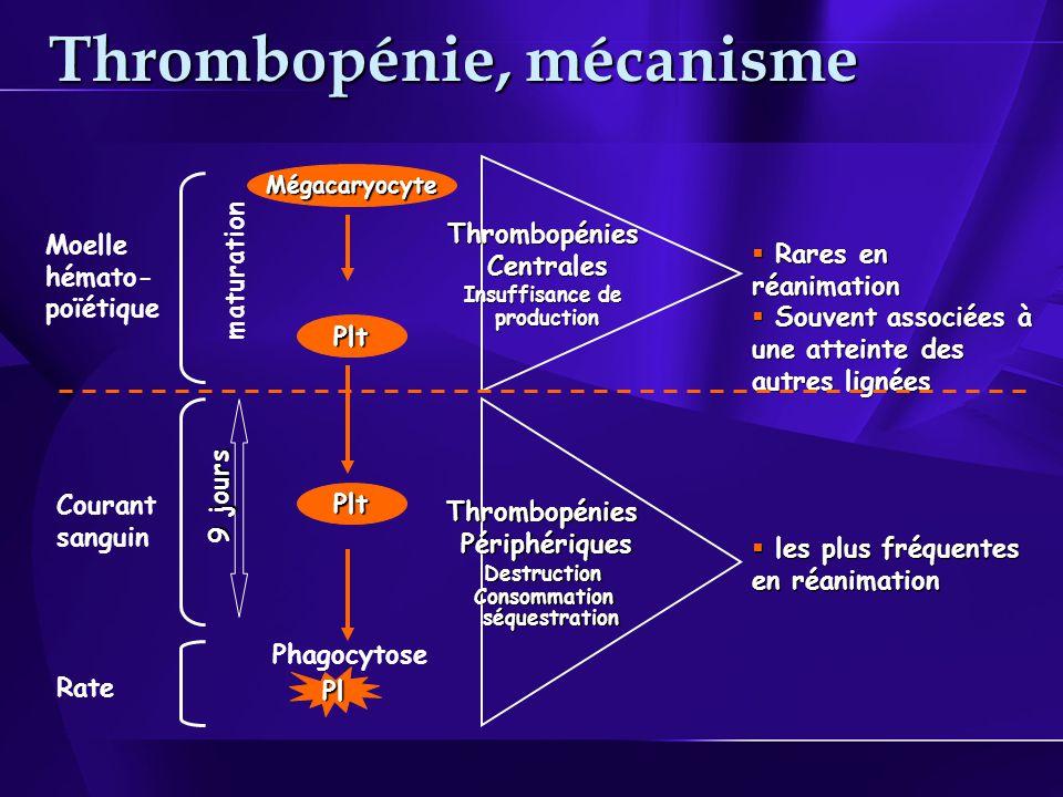 Thrombopénie, mécanisme ThrombopéniesCentrales Insuffisance de production Rares en réanimation Rares en réanimation Souvent associées à une atteinte des autres lignées Souvent associées à une atteinte des autres lignées ThrombopéniesPériphériquesDestructionConsommation séquestration séquestration les plus fréquentes en réanimation les plus fréquentes en réanimation Mégacaryocyte Plt Moelle hémato- poïétique maturation Pl 9 jours Plt Courant sanguin Rate Phagocytose