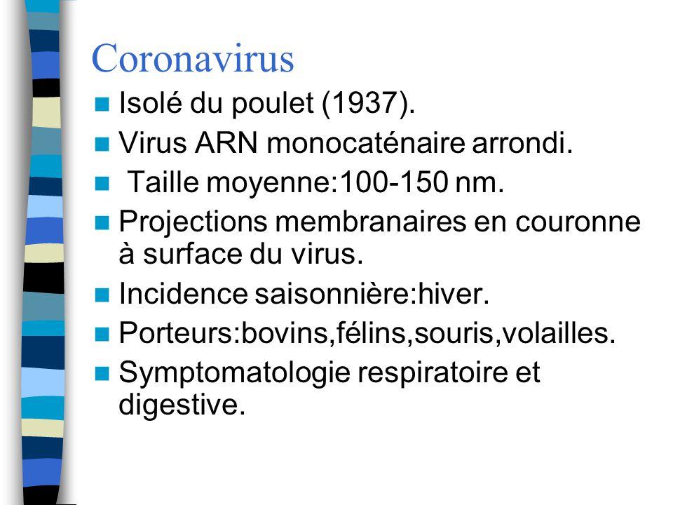 Coronavirus Isolé du poulet (1937). Virus ARN monocaténaire arrondi. Taille moyenne:100-150 nm. Projections membranaires en couronne à surface du viru