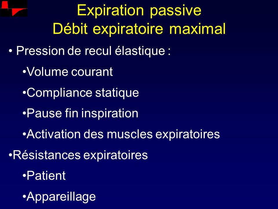 Expiration passive Débit expiratoire maximal Pression de recul élastique : Volume courant Compliance statique Pause fin inspiration Activation des mus
