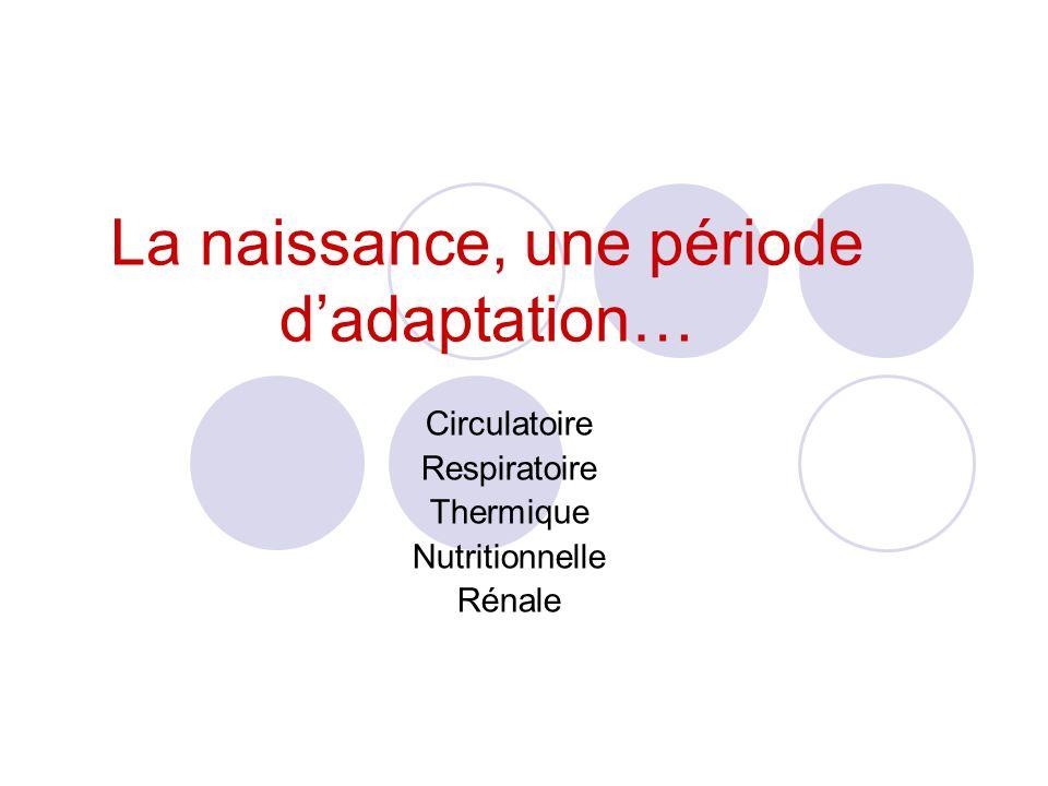 La naissance, une période dadaptation… Circulatoire Respiratoire Thermique Nutritionnelle Rénale