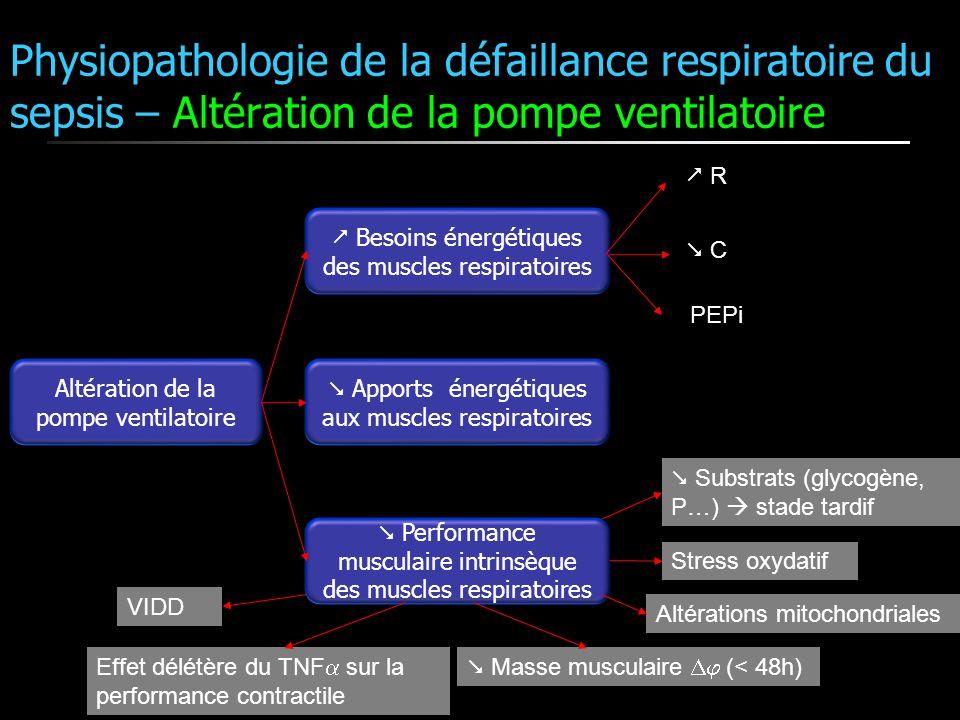 Altération de la pompe ventilatoire Besoins énergétiques des muscles respiratoires Apports énergétiques aux muscles respiratoires Performance musculai