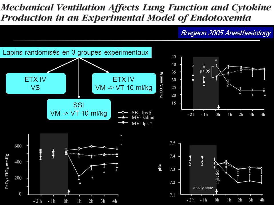 Bregeon 2005 Anesthesiology Lapins randomisés en 3 groupes expérimentaux ETX IV VS SSI VM -> VT 10 ml/kg ETX IV VM -> VT 10 ml/kg