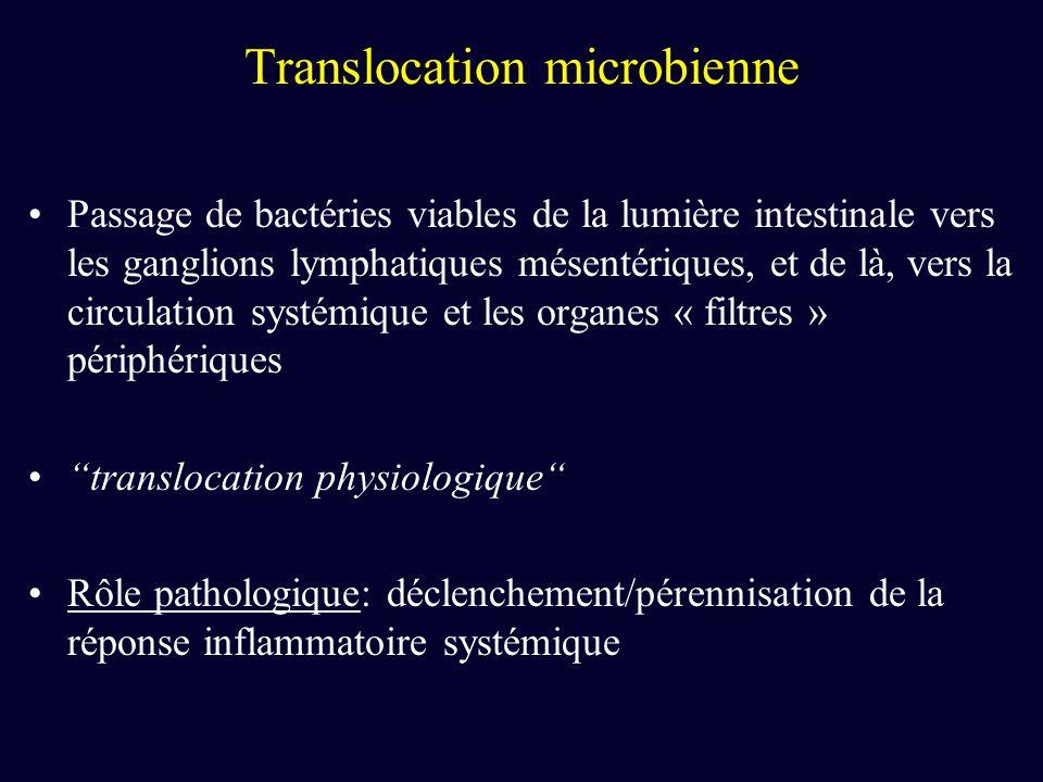 Passage de bactéries viables de la lumière intestinale vers les ganglions lymphatiques mésentériques, et de là, vers la circulation systémique et les
