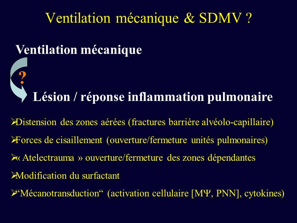 Ventilation mécanique & SDMV ? Ventilation mécanique Lésion / réponse inflammation pulmonaire ? Distension des zones aérées (fractures barrière alvéol