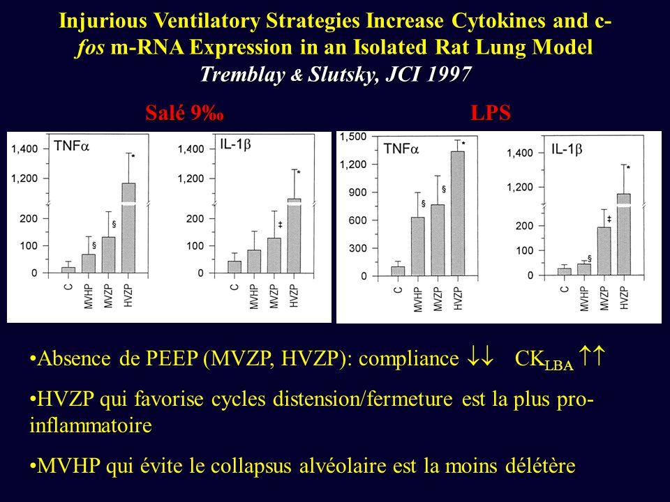 Tremblay & Slutsky, JCI 1997 Injurious Ventilatory Strategies Increase Cytokines and c- fos m-RNA Expression in an Isolated Rat Lung Model Tremblay &