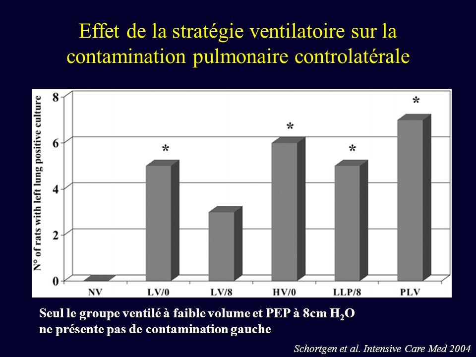 Effet de la stratégie ventilatoire sur la contamination pulmonaire controlatérale Schortgen et al. Intensive Care Med 2004 Seul le groupe ventilé à fa