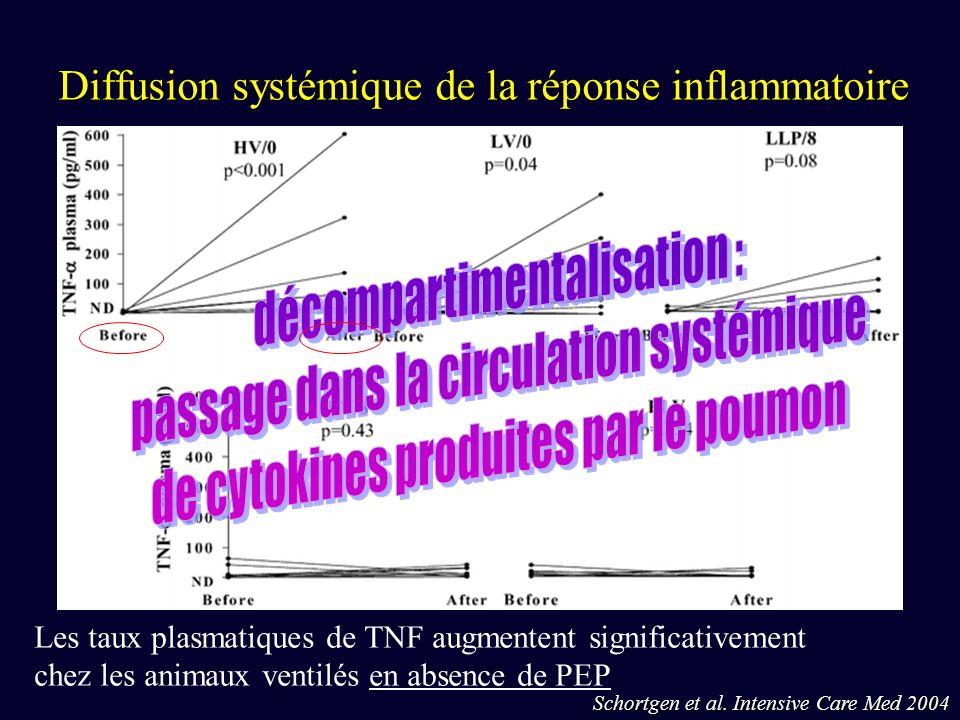Diffusion systémique de la réponse inflammatoire Schortgen et al. Intensive Care Med 2004 Les taux plasmatiques de TNF augmentent significativement ch