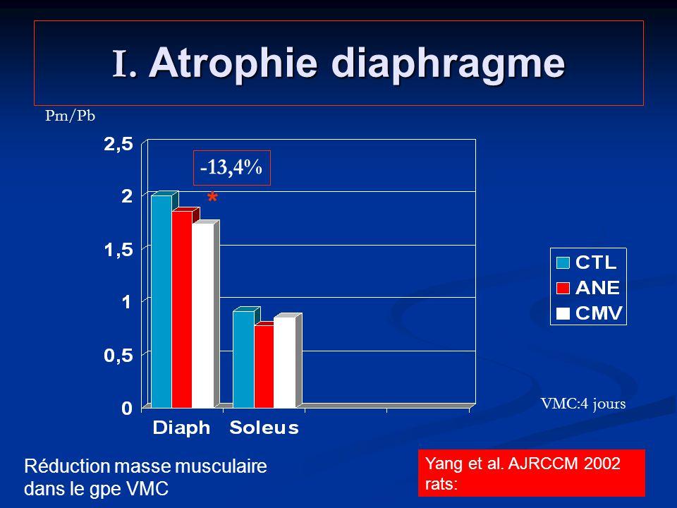 I. Atrophie diaphragme * Yang et al. AJRCCM 2002 rats: Pm/Pb -13,4% VMC:4 jours Réduction masse musculaire dans le gpe VMC
