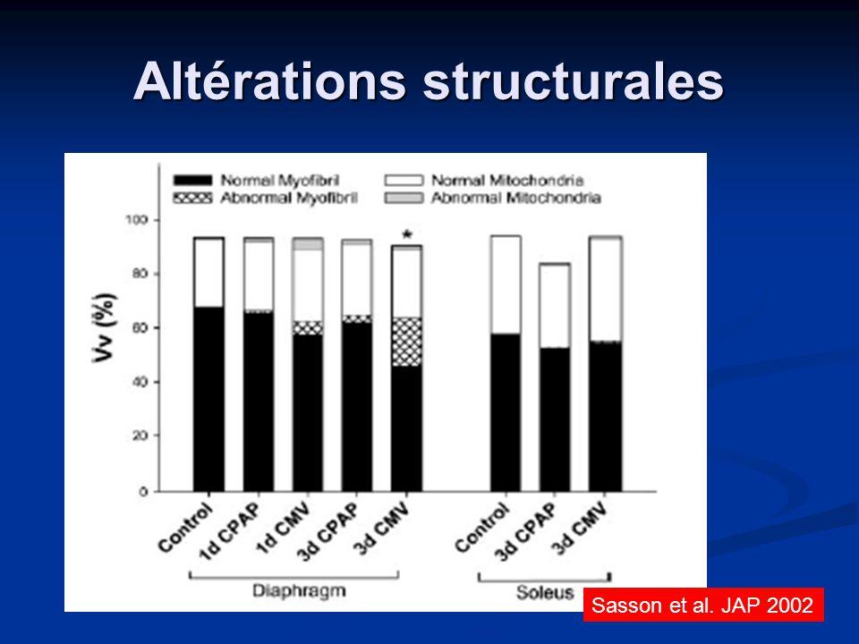 Altérations structurales Sasson et al. JAP 2002