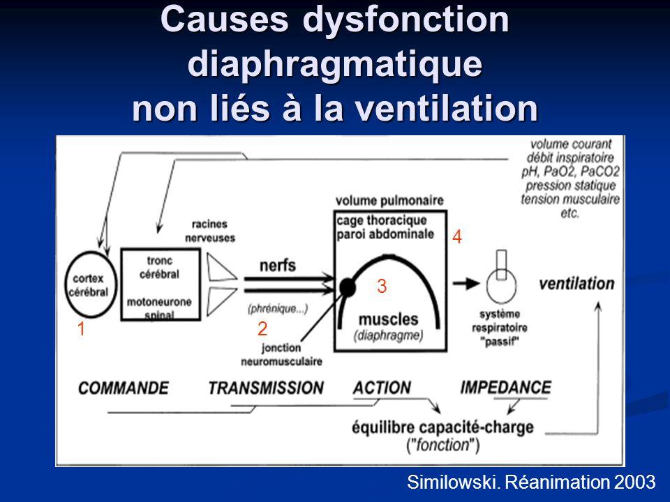 Causes dysfonction diaphragmatique non liés à la ventilation Similowski. Réanimation 2003 12 3 4