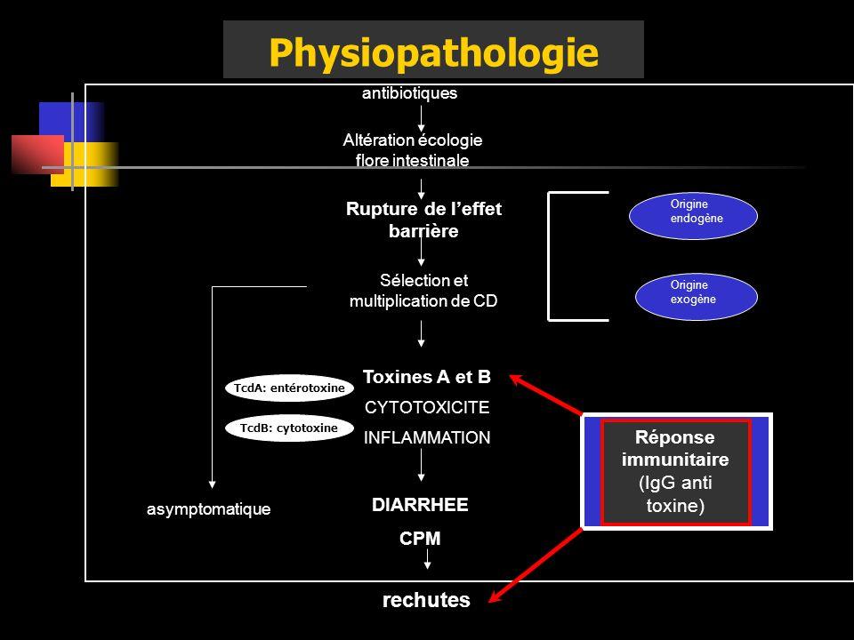 Physiopathologie Altération écologie flore intestinale Rupture de leffet barrière Sélection et multiplication de CD Toxines A et B CYTOTOXICITE INFLAM