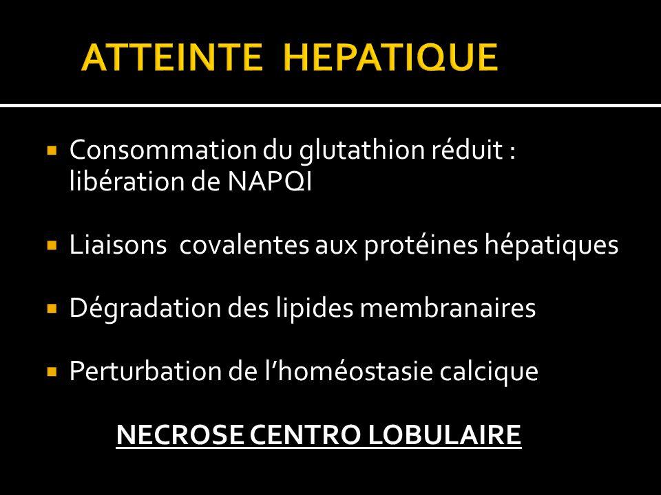 Consommation du glutathion réduit : libération de NAPQI Liaisons covalentes aux protéines hépatiques Dégradation des lipides membranaires Perturbation de lhoméostasie calcique NECROSE CENTRO LOBULAIRE