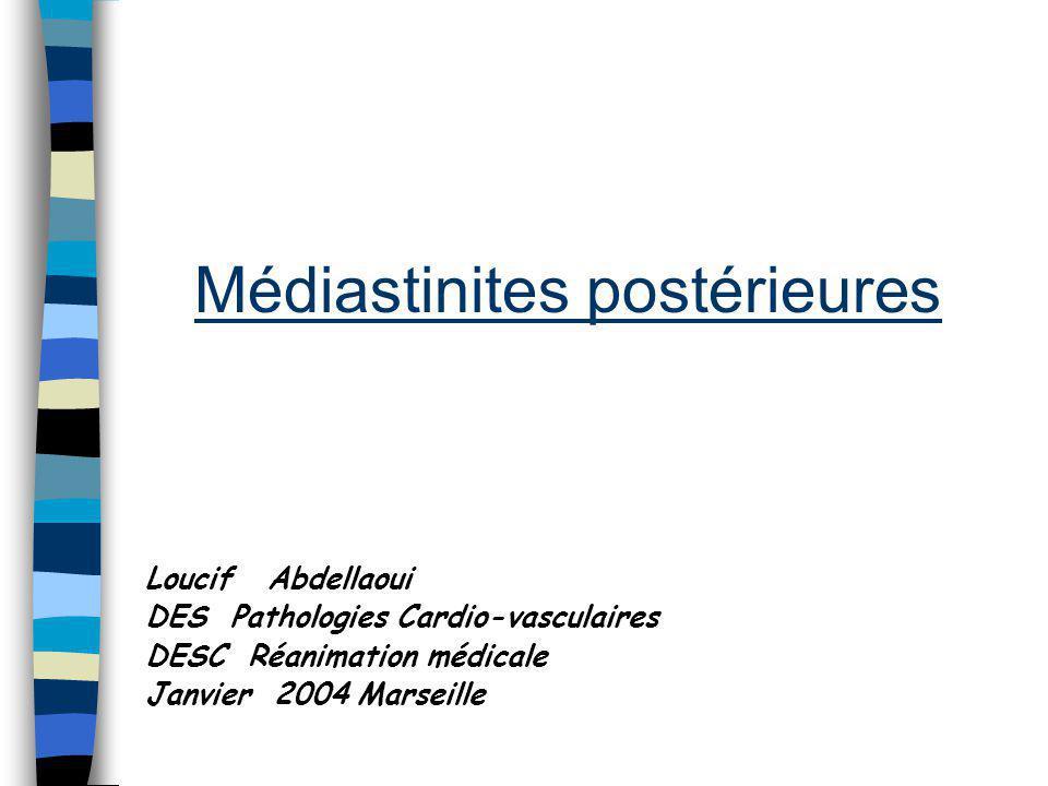 Médiastinites postérieures Loucif Abdellaoui DES Pathologies Cardio-vasculaires DESC Réanimation médicale Janvier 2004 Marseille