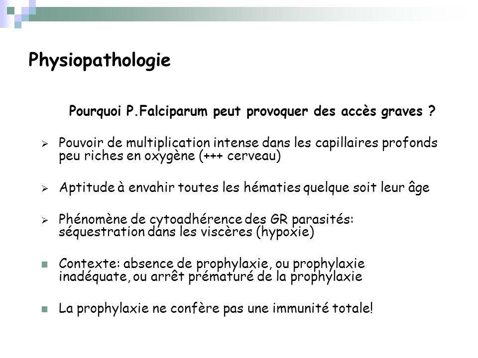 Physiopathologie Pourquoi P.Falciparum peut provoquer des accès graves .