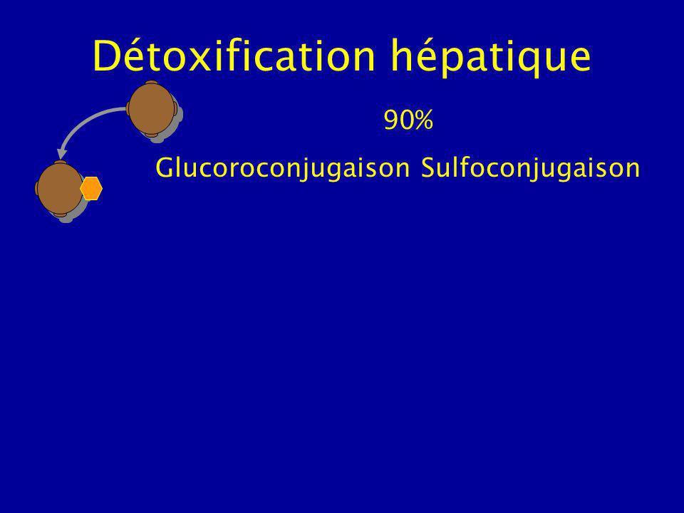 Détoxification hépatique 90% Glucoroconjugaison Sulfoconjugaison
