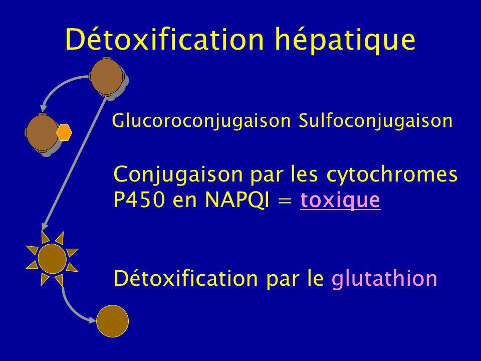 Détoxification hépatique Détoxification par le glutathion Conjugaison par les cytochromes P450 en NAPQI = toxique Glucoroconjugaison Sulfoconjugaison