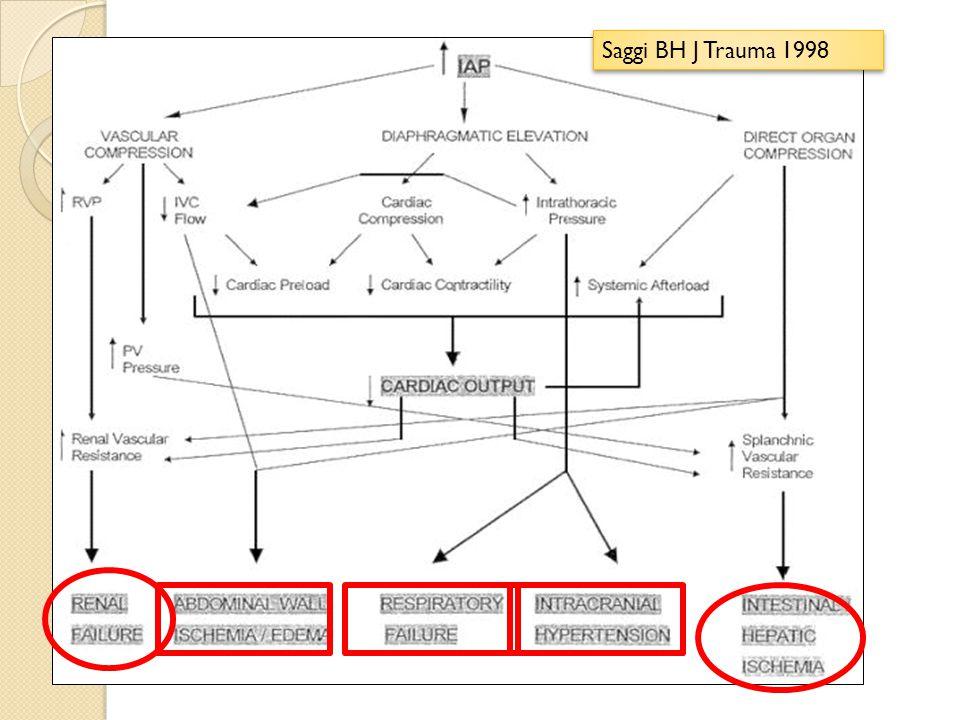 Conséquences Rein DFG, volémie efficace, compression parenchyme et uretères Insuffisance rénale Rein DFG, volémie efficace, compression parenchyme et uretères Insuffisance rénale Foie flux artère hépatique et Vporte, cytolyse, activité cyt P 450,, circulation colaterale,modific metabolisme glucide et lactate Foie flux artère hépatique et Vporte, cytolyse, activité cyt P 450,, circulation colaterale,modific metabolisme glucide et lactate Digestif perfusion, ischémie muqueuse, nécrose, translocation, SDMV Digestif perfusion, ischémie muqueuse, nécrose, translocation, SDMV Cerveau HTIC même sans trauma crânien, drainage Veine jugulaire Cerveau HTIC même sans trauma crânien, drainage Veine jugulaire Cœur DC par precharge ( retour veineux), compliance myocarde, dysfonction VD, PVC et PAPO faussement élevées Cœur DC par precharge ( retour veineux), compliance myocarde, dysfonction VD, PVC et PAPO faussement élevées La paroi abdominale subit des phénomènes ischémiques, infiltration œdémateuse murale qui altèrent progressivement la compliance pariétale abdominale Poumon refoulement diaphragmatique, CPT, compliance système respi, VT, travail respiratoire, P ins en VM, hypoxémie, hypercapnie Poumon refoulement diaphragmatique, CPT, compliance système respi, VT, travail respiratoire, P ins en VM, hypoxémie, hypercapnie