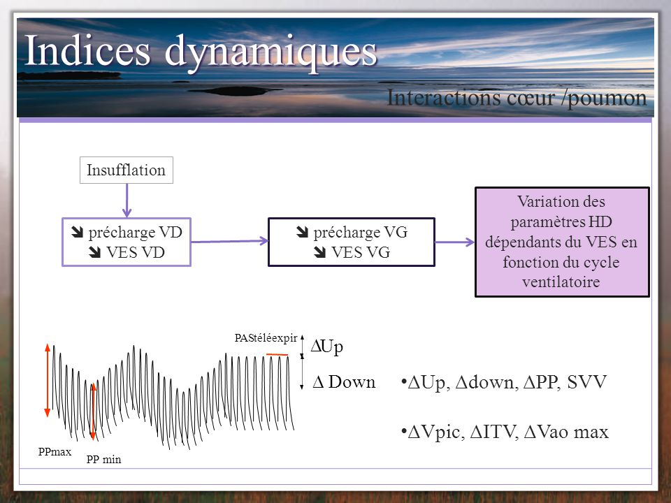 Courbe de pléthysmographie Courbe de pléthysmographie superposable Indices dérivés testés: SPV pleth ΔPOP ΔPVI ΔPEP