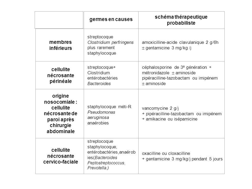 germes en causes schéma thérapeutique probabiliste membres inférieurs streptocoque Clostridium perfringens plus rarement staphylocoque amoxicilline-acide clavulanique 2 g/6h gentamicine 3 mg/kg /j cellulite nécrosante périnéale streptocoque+ Clostridium entérobactéries Bacteroides céphalosporine de 3 e génération + métronidazole aminoside pipéracilline-tazobactam ou imipénem aminoside origine nosocomiale : cellulite nécrosante de paroi après chirurgie abdominale staphylocoque méti-R Pseudomonas aeruginosa anaérobies vancomycine 2 g/j + pipéracilline-tazobactam ou imipénem + amikacine ou isépamicine cellulite nécrosante cervico-faciale streptocoque staphylocoque, entérobactéries,anaérob ies( Bacteroides Peptostreptococcus, Prevotella,) oxacilline ou cloxacilline + gentamicine 3 mg/kg/j pendant 5 jours