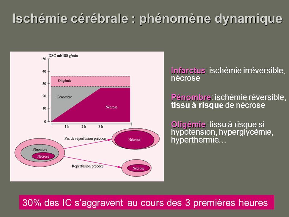 Ischémie cérébrale : phénomène dynamique Ischémie cérébrale : phénomène dynamique Infarctus Infarctus: ischémie irréversible, nécrose Pénombre Pénombr