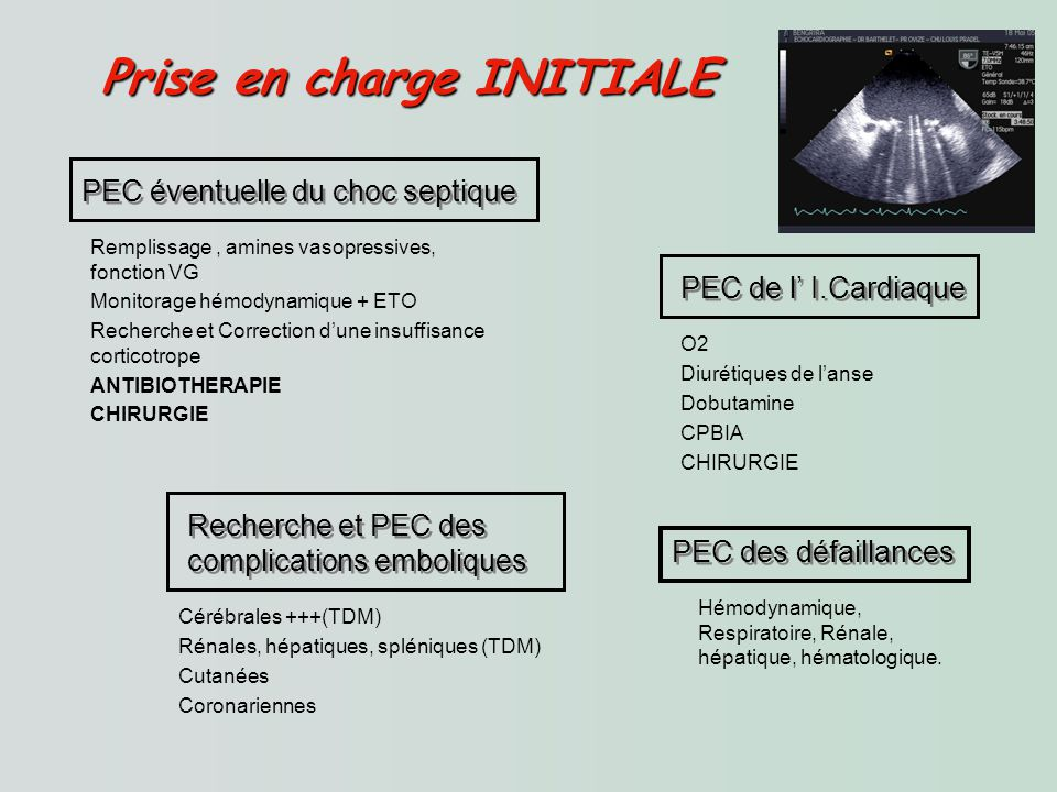 Prise en charge INITIALE Prise en charge INITIALE PEC éventuelle du choc septique Remplissage, amines vasopressives, fonction VG Monitorage hémodynamique + ETO Recherche et Correction dune insuffisance corticotrope ANTIBIOTHERAPIE CHIRURGIE PEC de l I.Cardiaque O2 Diurétiques de lanse Dobutamine CPBIA CHIRURGIE PEC des défaillances Hémodynamique, Respiratoire, Rénale, hépatique, hématologique.
