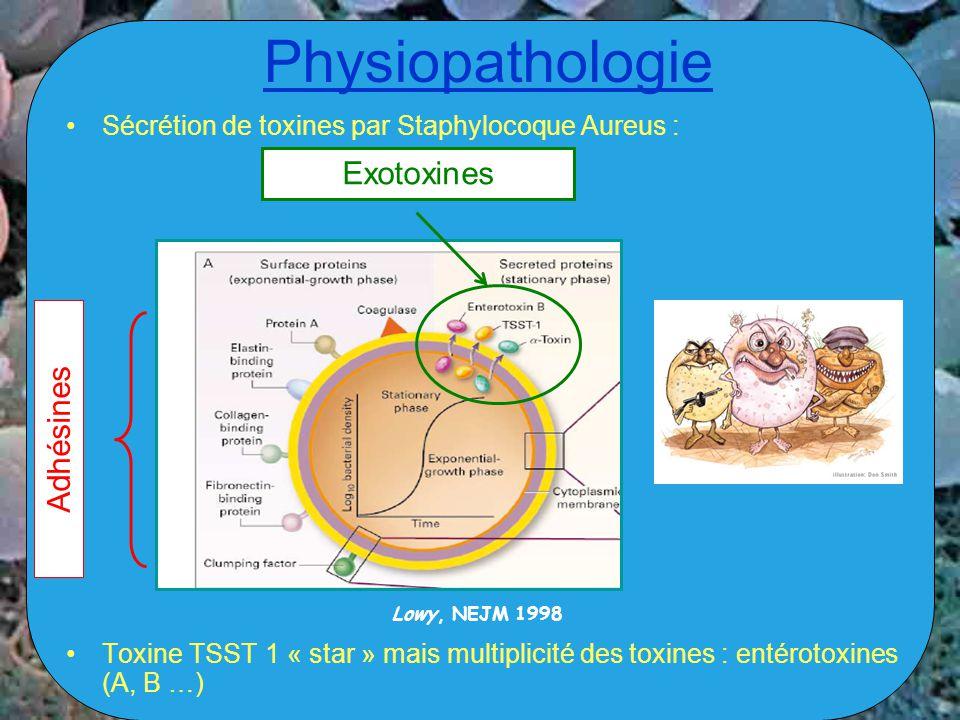 Physiopathologie Sécrétion de toxines par Staphylocoque Aureus : Toxine TSST 1 « star » mais multiplicité des toxines : entérotoxines (A, B …) Adhésin