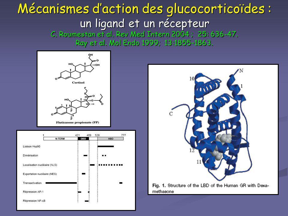 Mécanismes daction des glucocorticoïdes : un ligand et un récepteur C. Roumestan et al. Rev Med Intern 2004 ; 25: 636-47. Ray et al. Mol Endo 1999; 13