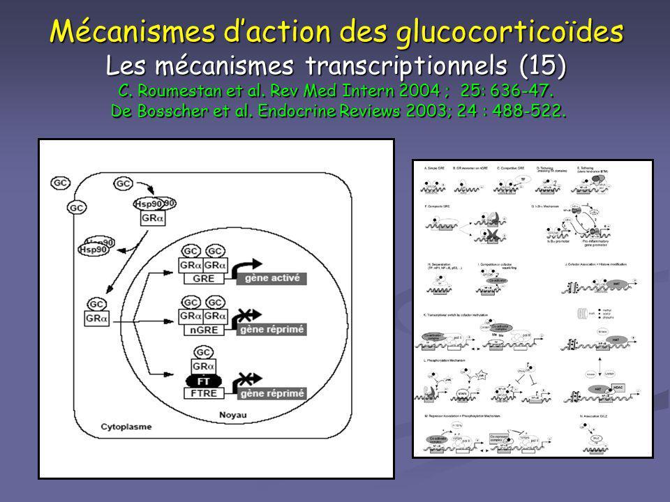Mécanismes daction des glucocorticoïdes Les mécanismes transcriptionnels (15) C. Roumestan et al. Rev Med Intern 2004 ; 25: 636-47. De Bosscher et al.