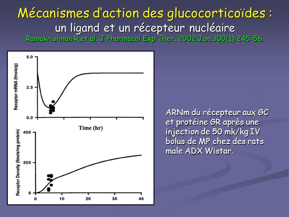 Mécanismes daction des glucocorticoïdes : un ligand et un récepteur nucléaire Ramakrishnan R,et al. J Pharmacol Exp Ther. 2002 Jan;300(1):245-56. ARNm