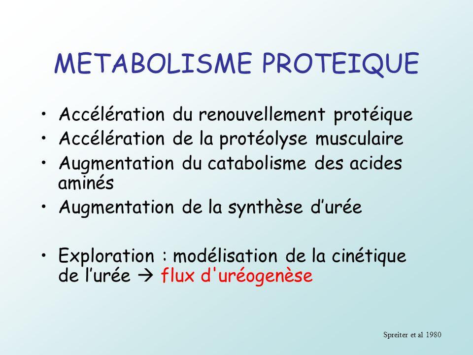 METABOLISME PROTEIQUE Accélération du renouvellement protéique Accélération de la protéolyse musculaire Augmentation du catabolisme des acides aminés