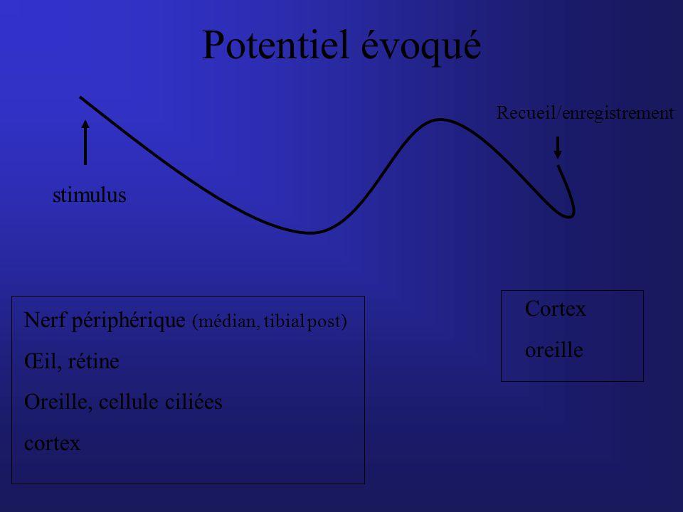 Potentiel évoqué stimulus Recueil/enregistrement Nerf périphérique (médian, tibial post) Œil, rétine Oreille, cellule ciliées cortex Cortex oreille