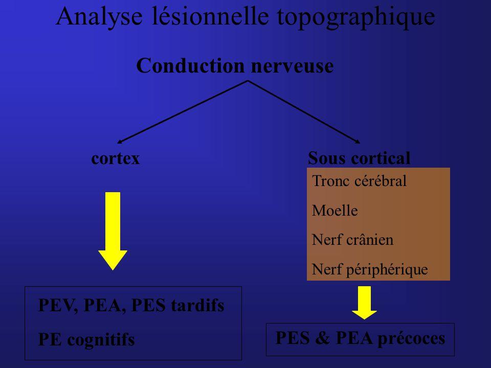 Analyse lésionnelle topographique Conduction nerveuse cortexSous cortical Tronc cérébral Moelle Nerf crânien Nerf périphérique PES & PEA précoces PEV,