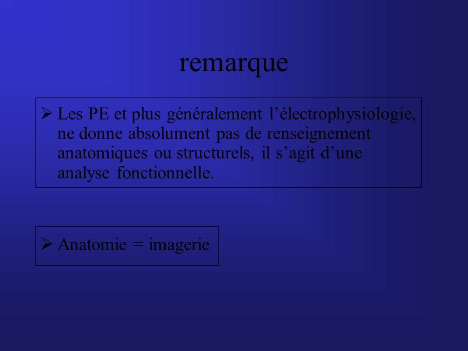 remarque Les PE et plus généralement lélectrophysiologie, ne donne absolument pas de renseignement anatomiques ou structurels, il sagit dune analyse f
