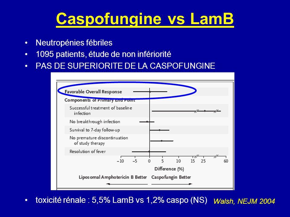 Caspofungine vs LamB Neutropénies fébriles 1095 patients, étude de non infériorité PAS DE SUPERIORITE DE LA CASPOFUNGINE toxicité rénale : 5,5% LamB vs 1,2% caspo (NS) Walsh, NEJM 2004