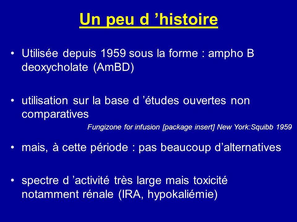 Néphrotoxicité : 15% pour certains 30% pour dautres Cette toxicité est dose dépendante (0,5 mg/kg/j) Butler, Ann Intern Med 1964 Augmentation du risque si diurétiques associés ou IR préexistante Bates, Kidney Int 2001 Diminution de la néphrotoxicité si perfusion lente (24H) Bates, Clin Infect Dis 2001 Wingard, Clin Infect Dis 1999 Pathak, Clin Infect Dis 1998 Eriksson, Br Med J 2001 Speich, Swiss Med Wkly 2002