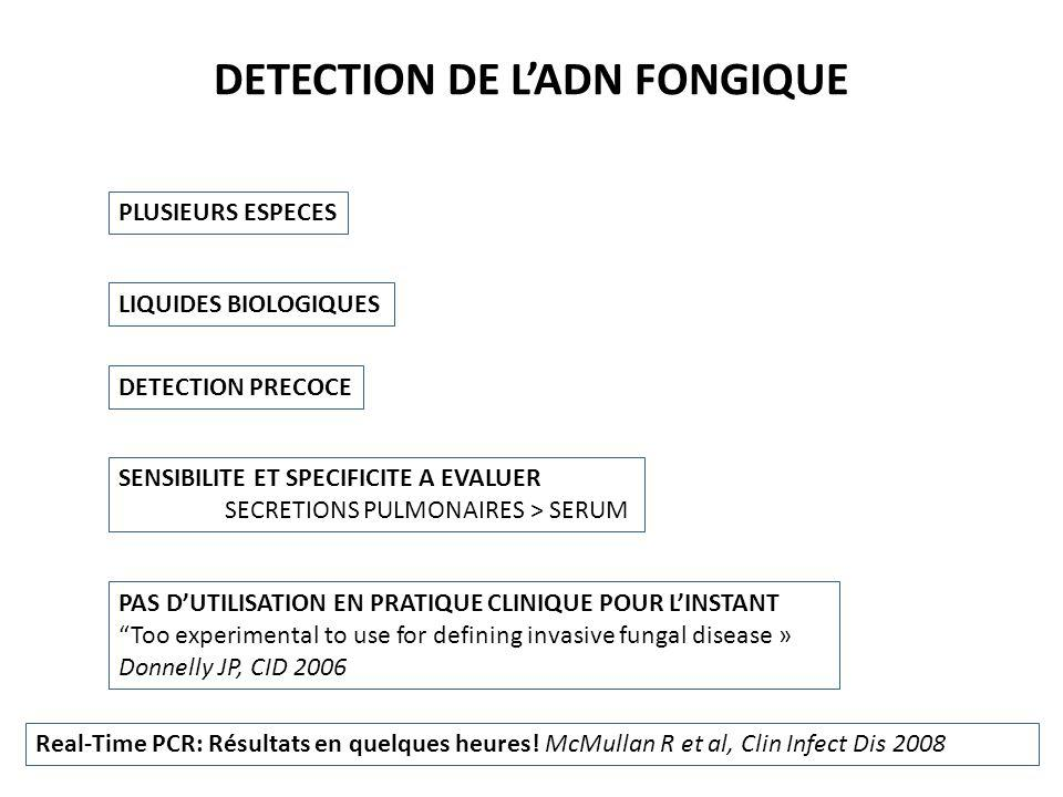 DETECTION DE LADN FONGIQUE PLUSIEURS ESPECES LIQUIDES BIOLOGIQUES SENSIBILITE ET SPECIFICITE A EVALUER SECRETIONS PULMONAIRES > SERUM PAS DUTILISATION EN PRATIQUE CLINIQUE POUR LINSTANT Too experimental to use for defining invasive fungal disease » Donnelly JP, CID 2006 DETECTION PRECOCE Real-Time PCR: Résultats en quelques heures.