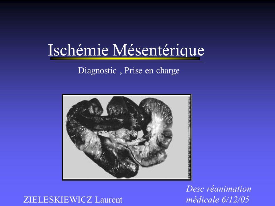 Ischémie Mésentérique ZIELESKIEWICZ Laurent Desc réanimation médicale 6/12/05 Diagnostic, Prise en charge