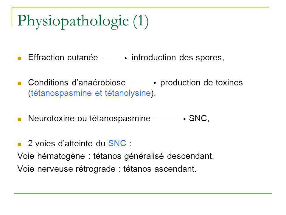 Dissémination des neurotoxines dans lorganisme Journal of